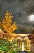 Bad Kissingen bei Nacht