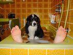 Bad mit Hund