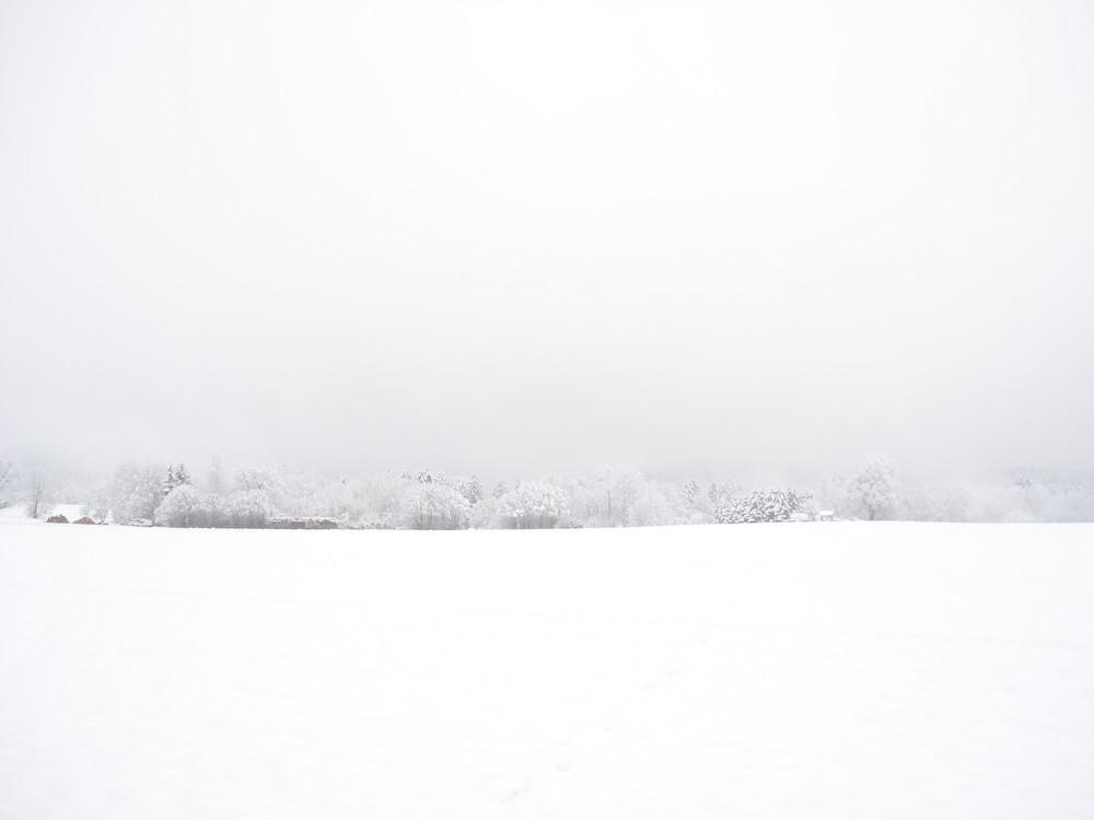 Bad Schandau in white