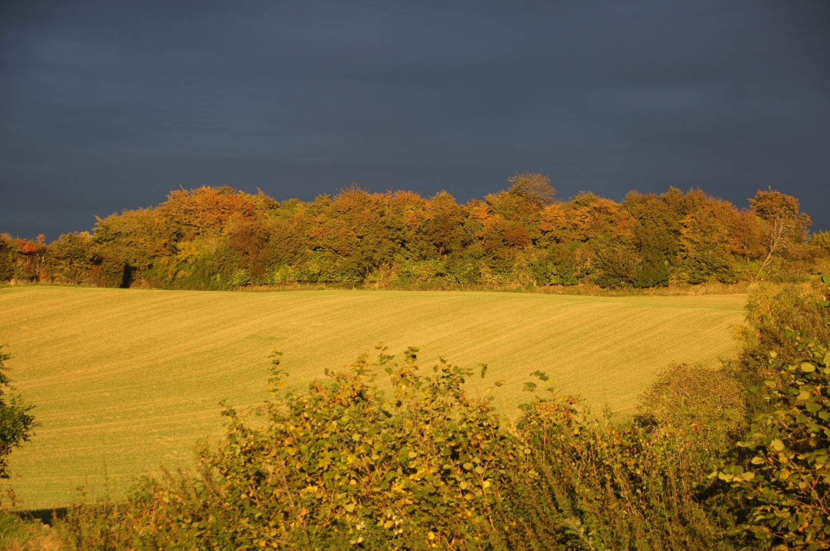 Bad Segeberg Herbst 2013 (1)