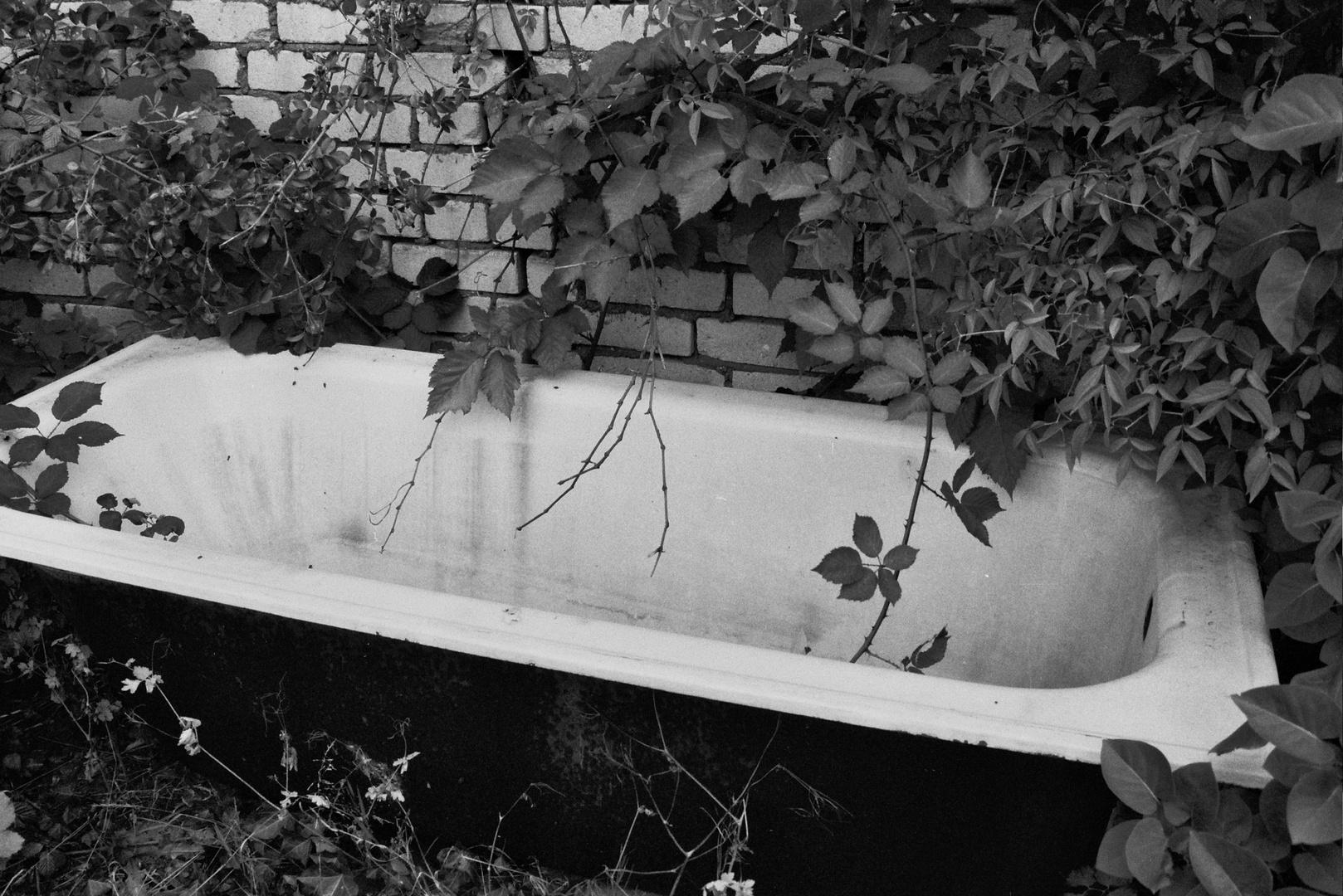 baden gehen