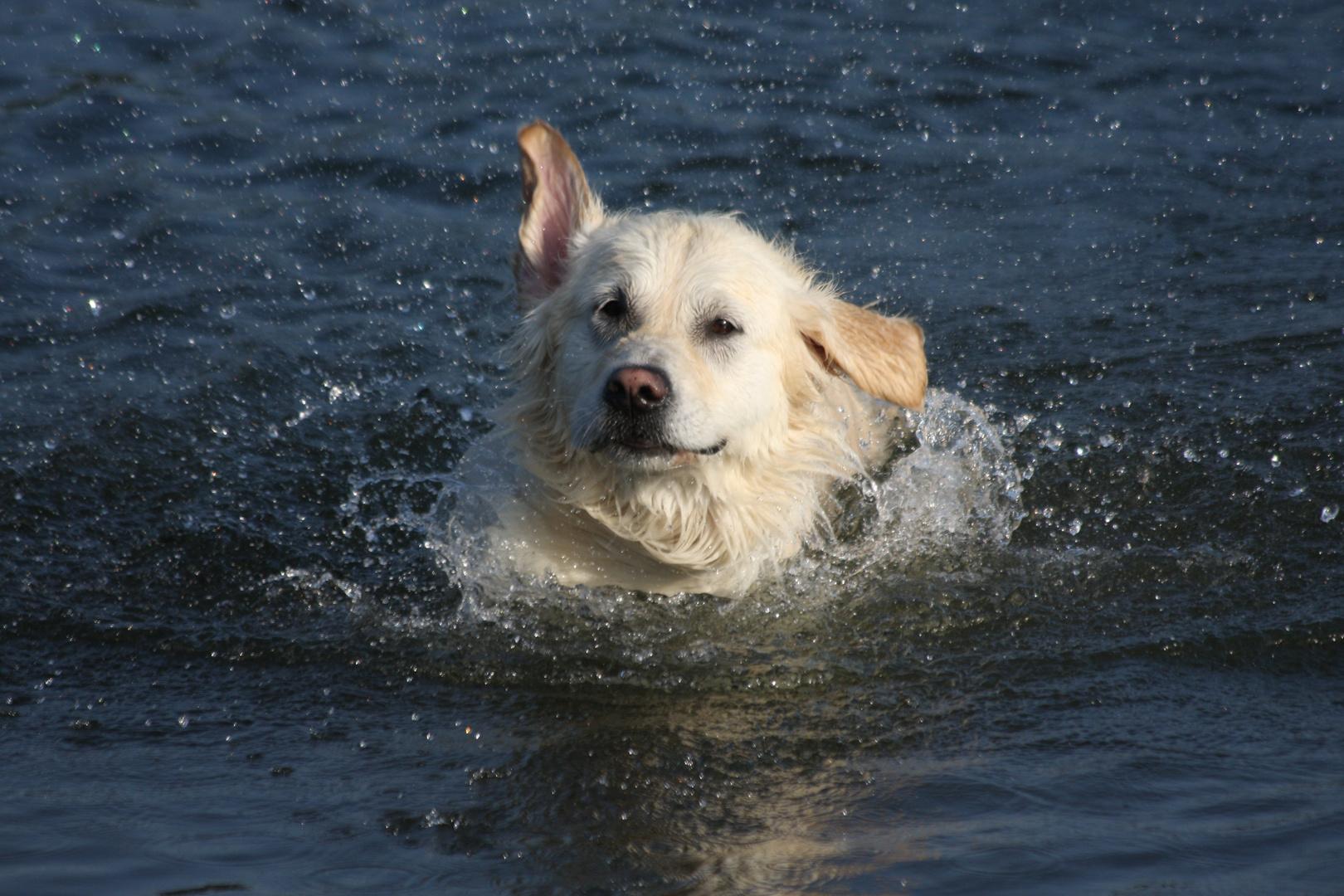 Badespaß!