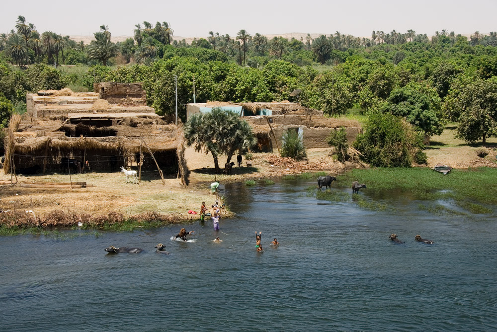 Badespass im Nil