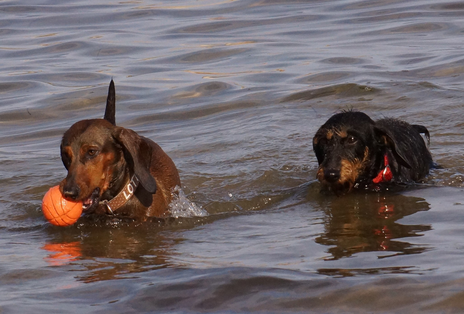 Badetag in der Ostsee