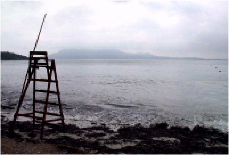 BÄH-Wotsch: Die Rettungsschwimmer vom Skrotul-See