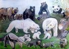 Bärenparty