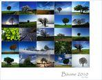 * Bäume 2010... *