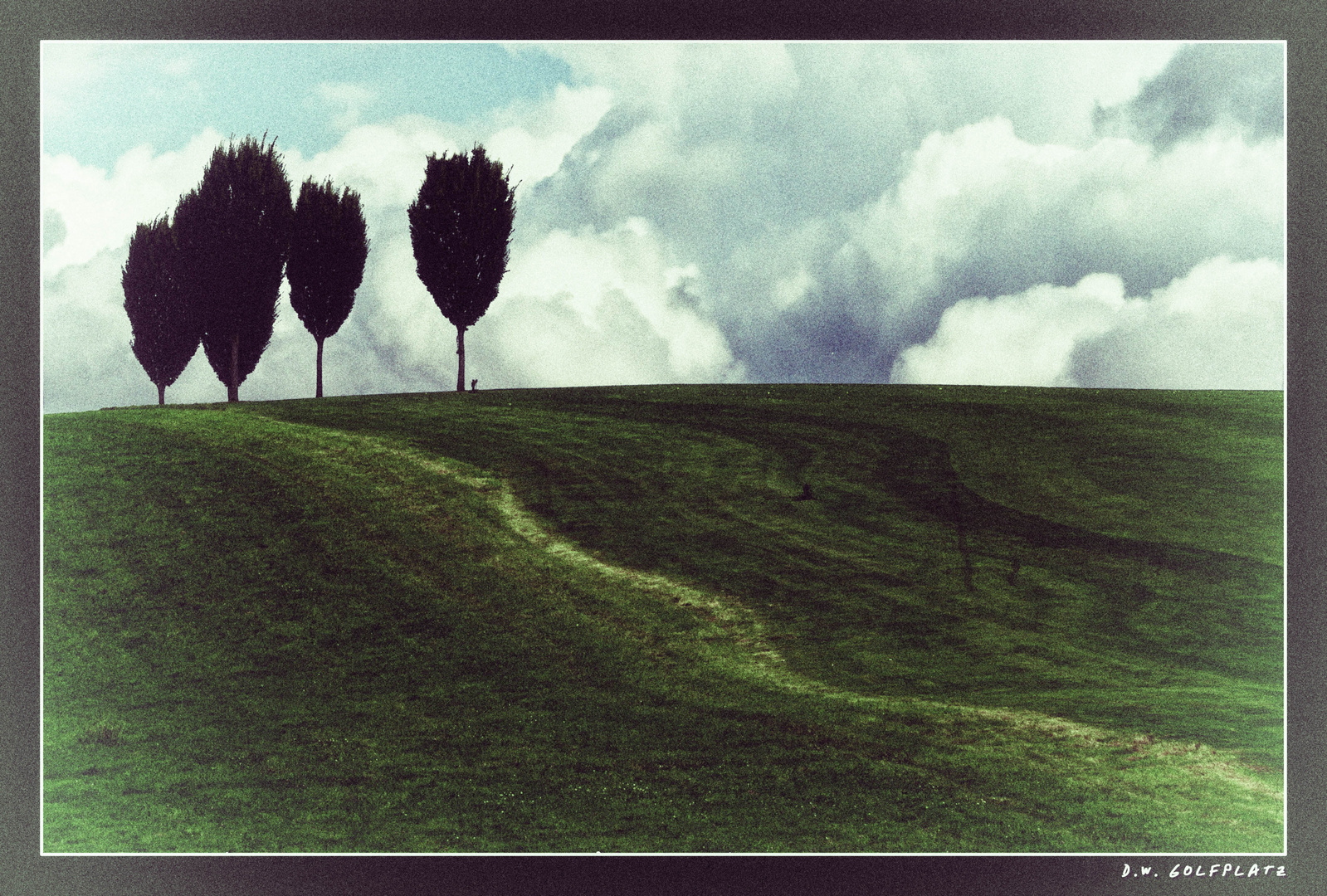 Bäume auf Golfplatz