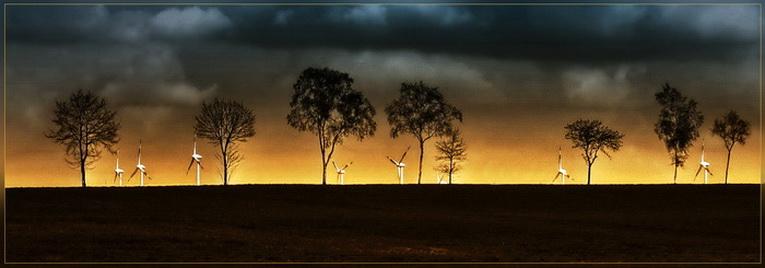 Bäume und Windräder