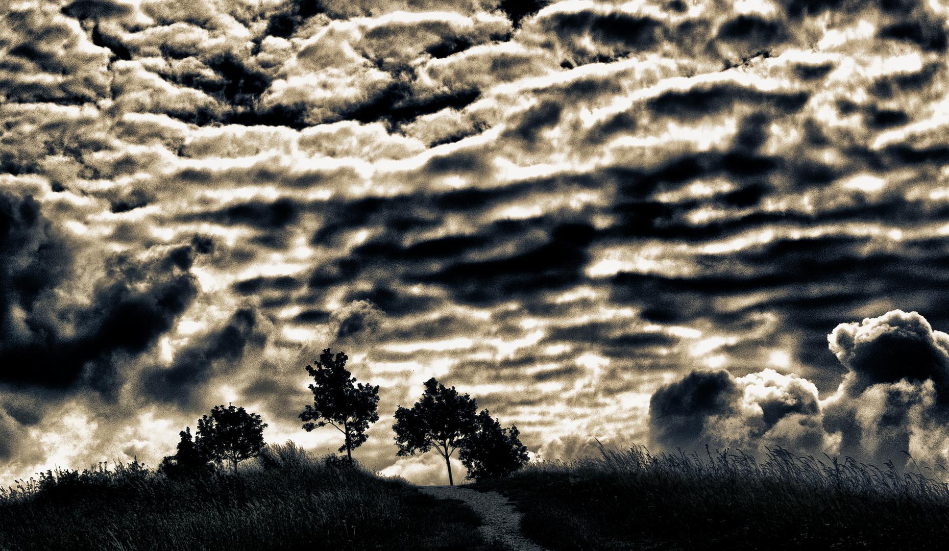 bäume und wolken ...