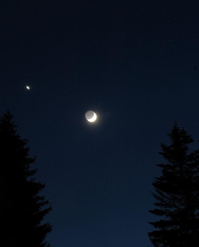 Bäume,Mond und Sterne....