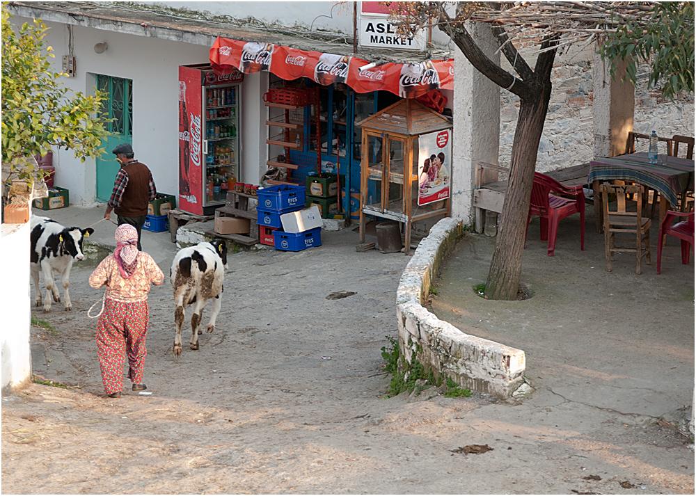 Bafa See / Türkei
