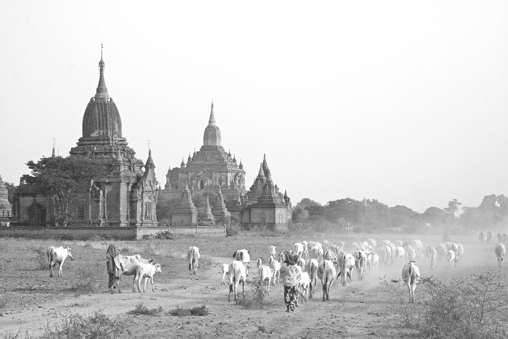 Bagan SW
