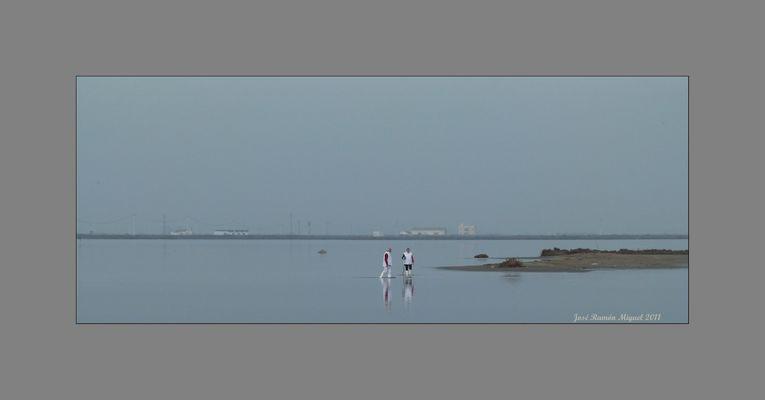 Bahía dels Alfacs