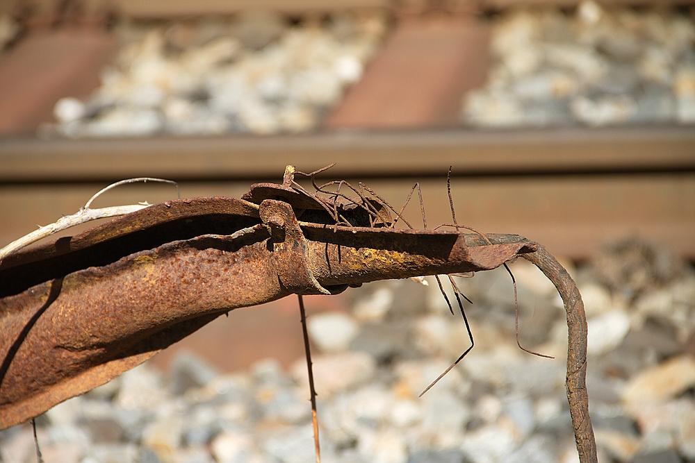 Bahn-Waran