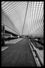 Bahnhof Liège-Guillemins 6