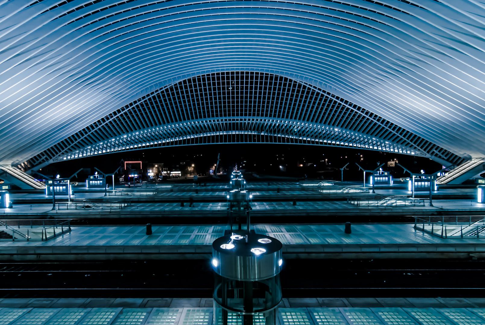 Bahnhof Liège-Guillemins in Lüttich - Santiago Calatrava