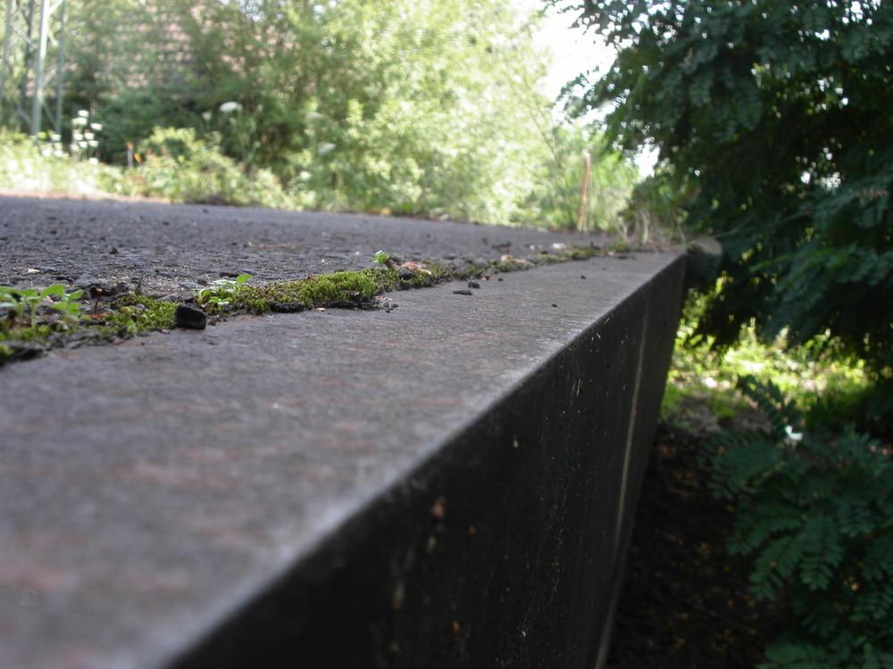 Bahnsteg