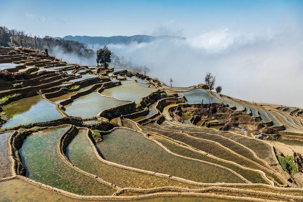 *Baida terraced fields*