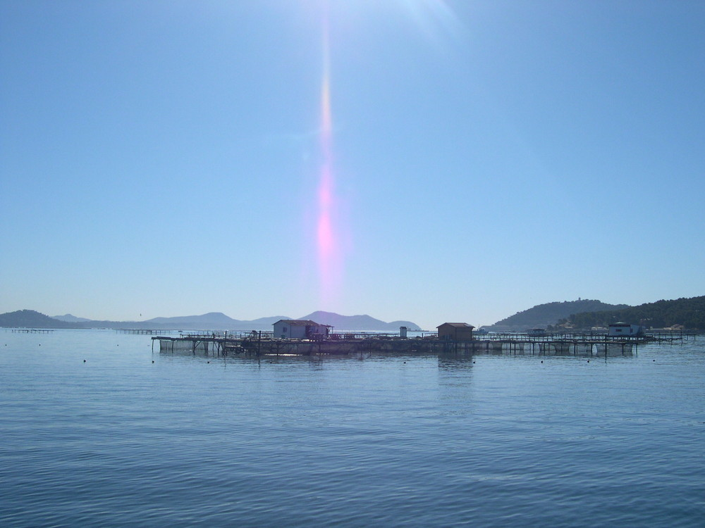 Baie de Saint-Mandrier 2008