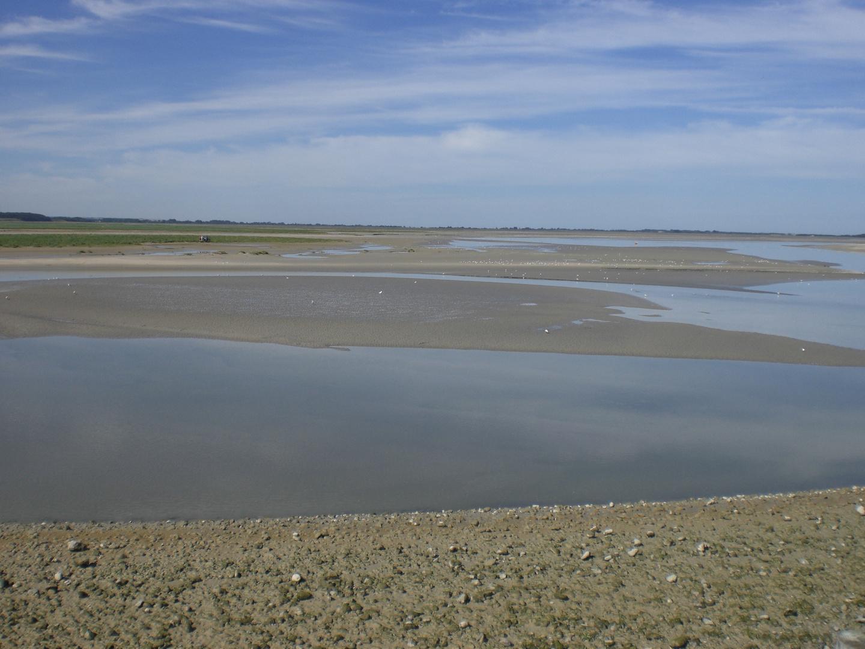 Baie de Somme - Juillet 2010