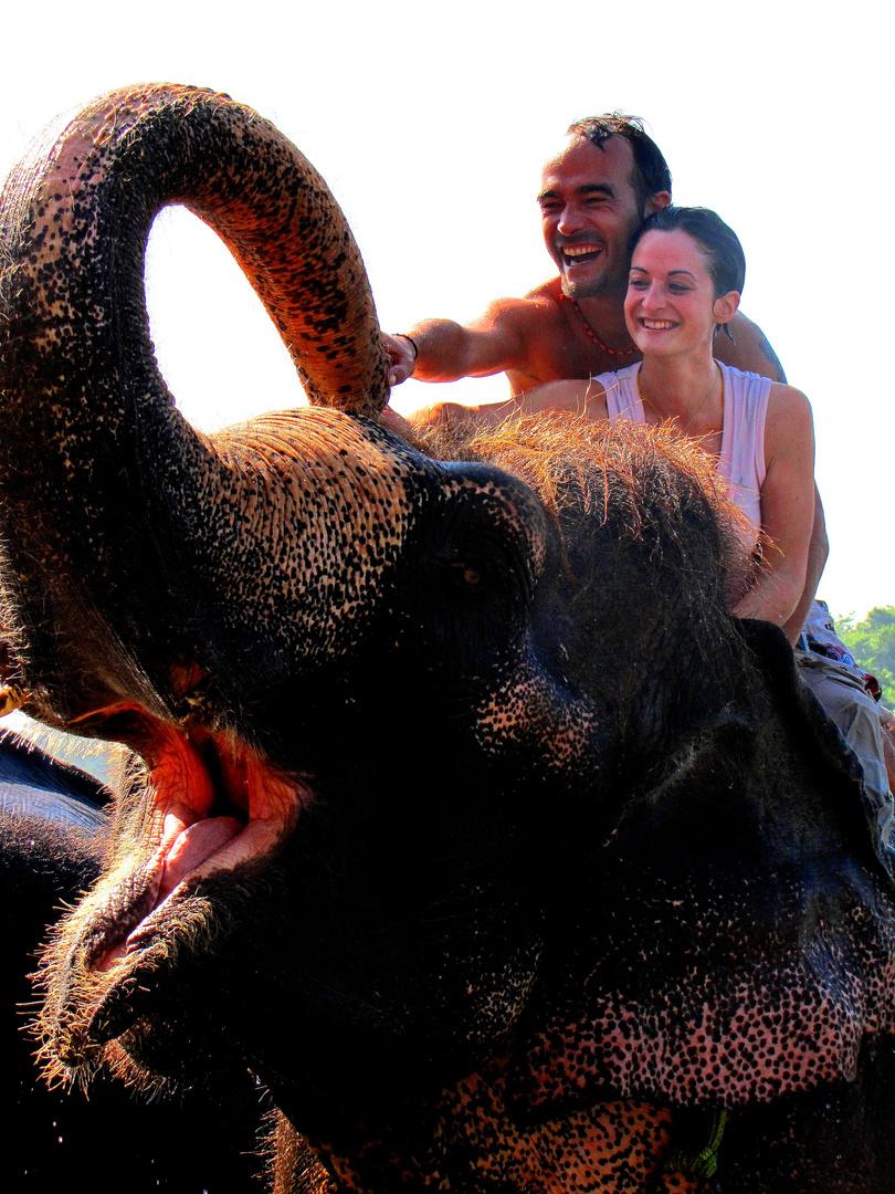 Bain avec un éléphant au népal