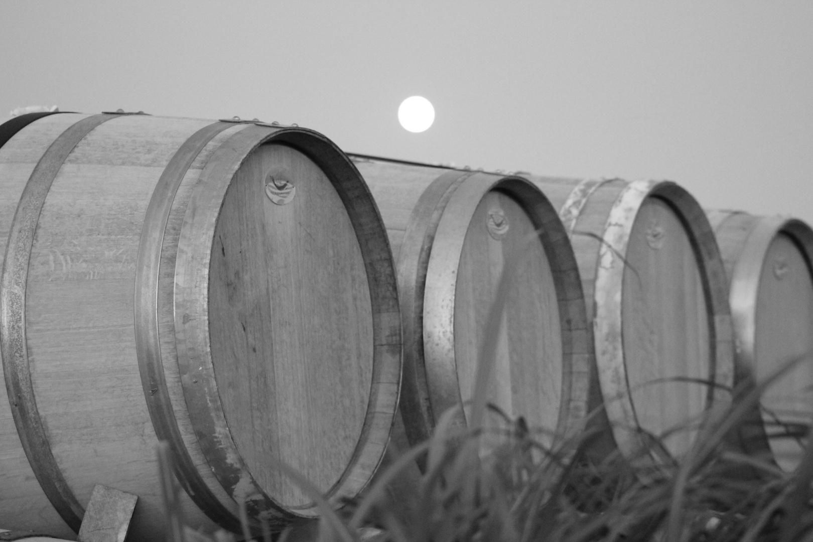 Bal de tonneaux au clair de lune