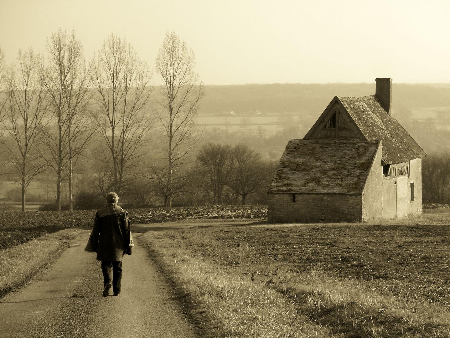 balade à la campagne