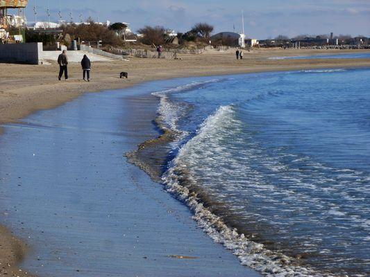 Balade hivernale  au bord de mer