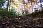 Balades dans le Jura