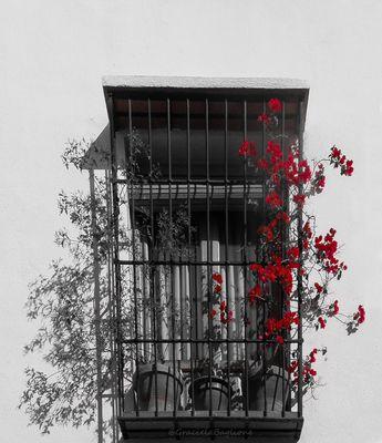 Balcón apasionado.
