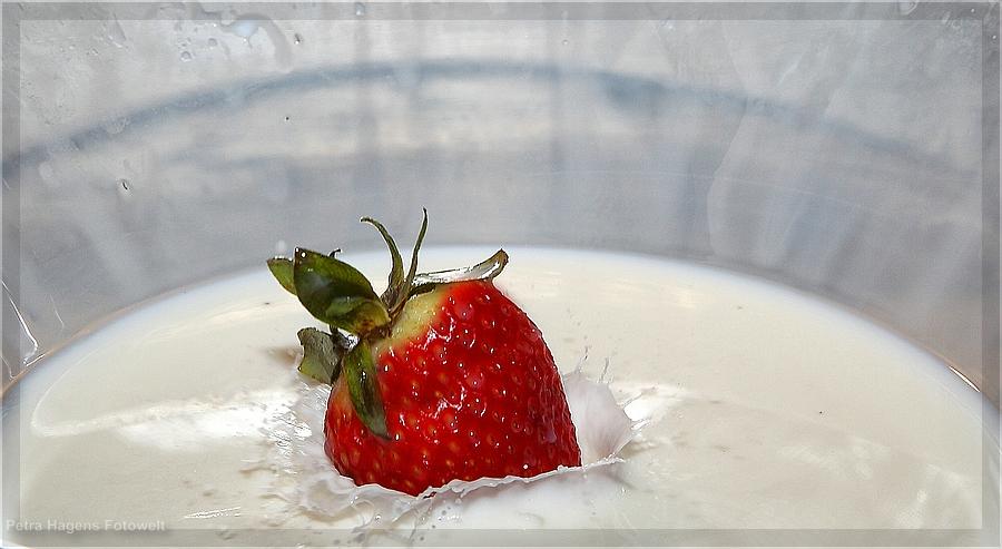 Bald ist wieder Erdbeerzeit