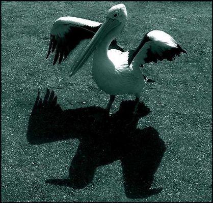 Balduin - das Schreckgespenst