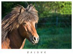BALDUR II