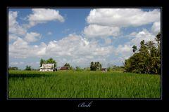 Bali 2009 *12