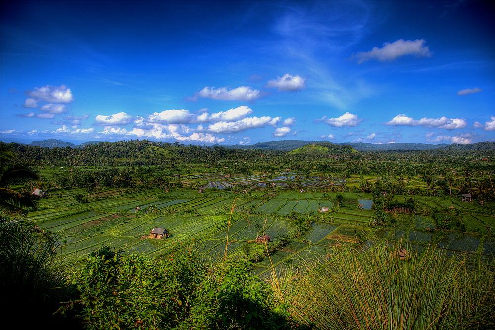 Bali - Balkonblick
