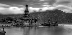 Balinese Daydream