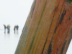 Balken am Strand
