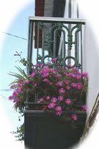 Balkon im Süden