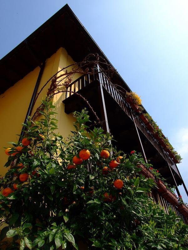 Balkon in Limone (Gardasee)