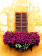 Balkon in Saluzzo