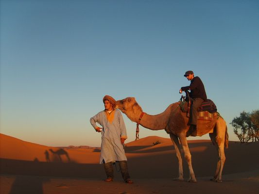 ballade à dos de dromadaire dans le désert