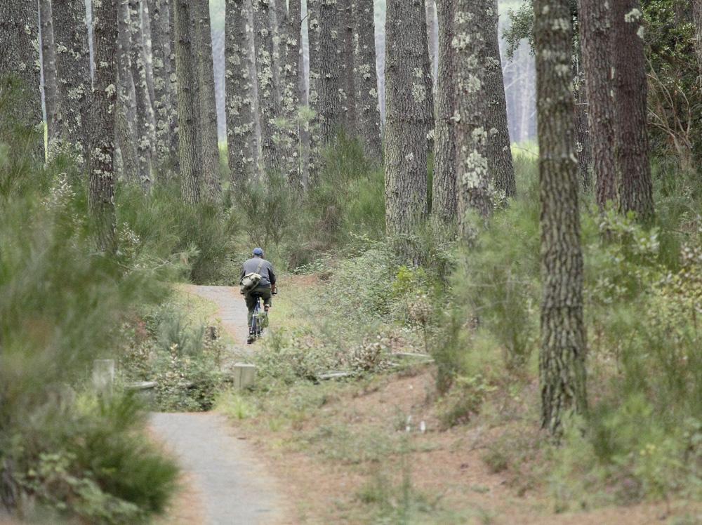 ballade en forêt !!!