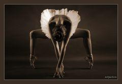 Ballerina III