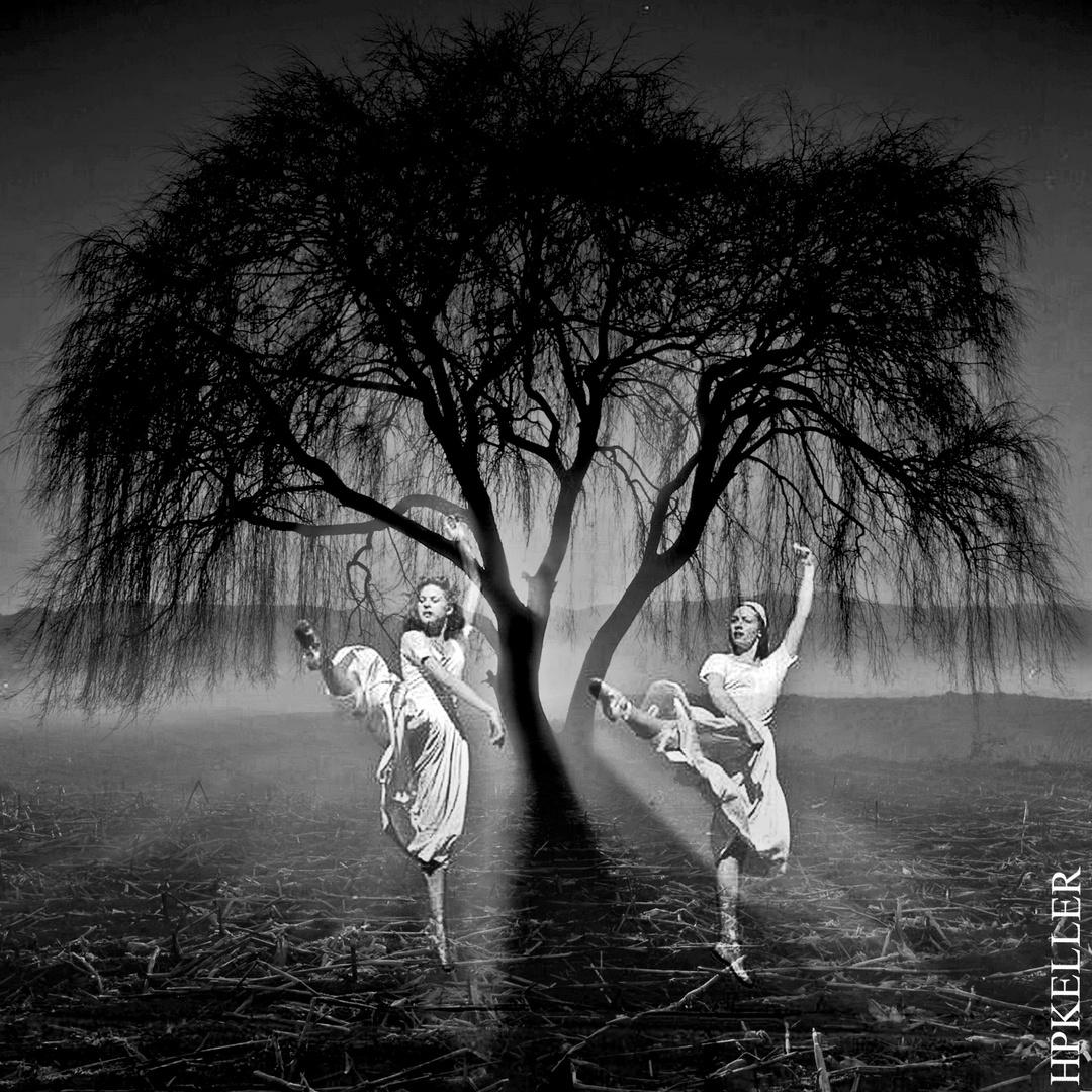 BallettArt II - Kombigrafie