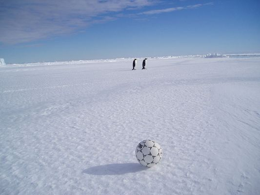 Ballrückgabe - antarktisch