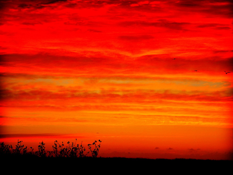 Baltic Sunrise on the day I Left Hou 15.09.2012