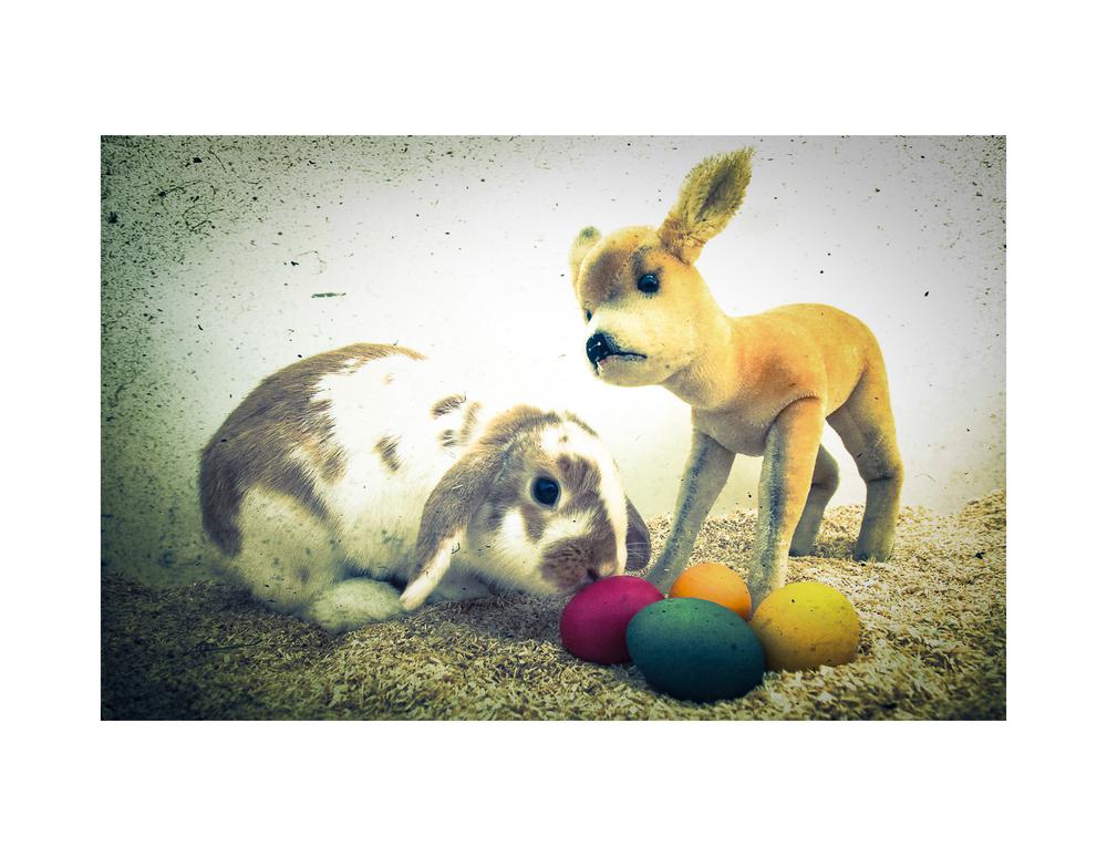 Bambi & Klopfer wünschen frohe Ostern!