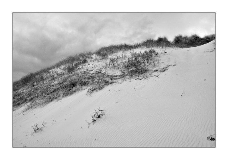 Bamburgh Dunes, Northumberland