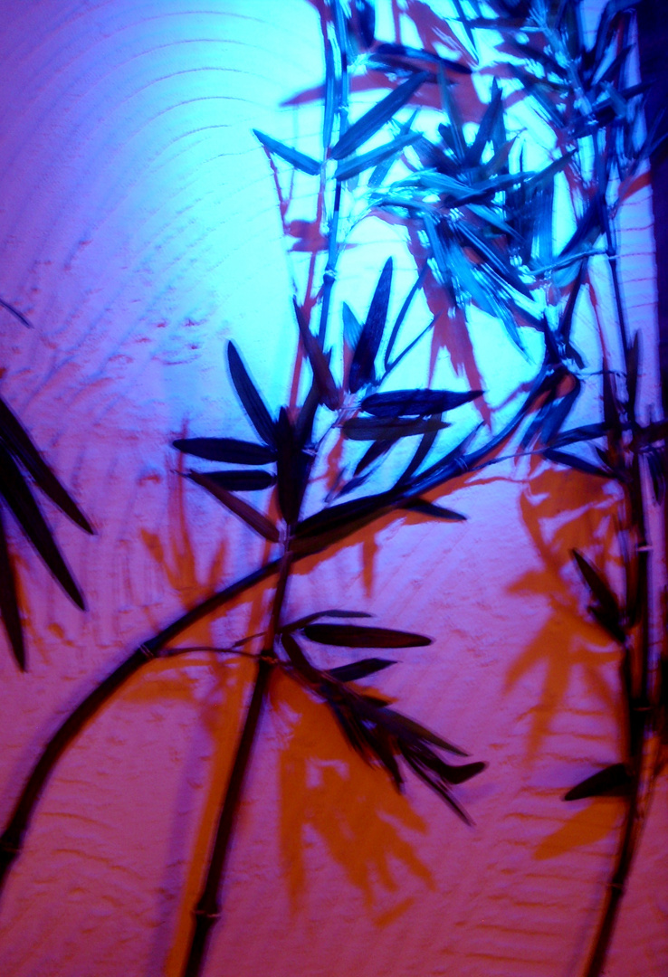 Bambus ColorArt